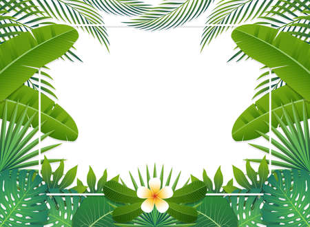 Summer background banner with green exotic palm leaves and tropical plants, background with copy space text. Vector illustration.