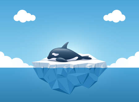 Cute Orca or the killer whale sleeping on the iceberg in the summertime. Iceberg with above and underwater view in the ocean. Summer background concept. Vector illustration