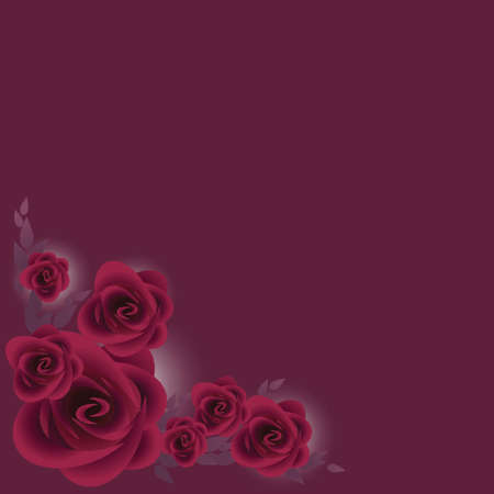 bunch of purple roses over dark purple background Illustration