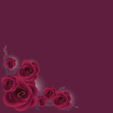 stelletje paarse rozen over donker paarse achtergrond Stock Illustratie