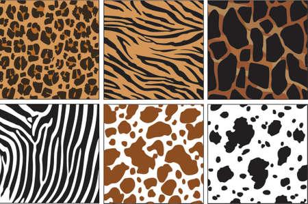illustration of animal skin textures, background patterns Illustration