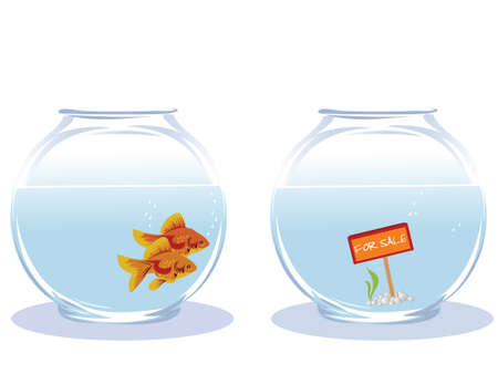 Two goldfish looking for new house