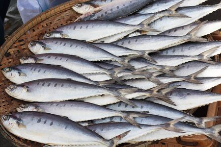 plenty: Plenty of fish on the tray in the market for sell