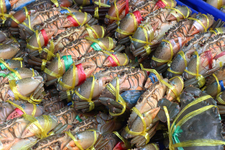 plenty: Plenty of living crabs being tie at the market for sell