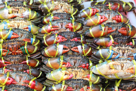 hard sell: Plenty of living crabs being tie at the market for sell