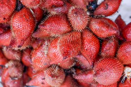 hard sell: Plenty of zalacca at the market for sell