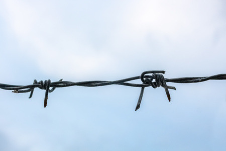 close up barbed wire on sky background
