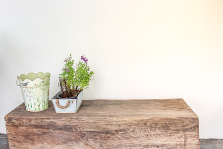 log basket: vase of plant and the basket on the wooden table with white background