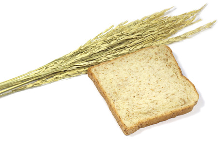 stalk: Square slice of fresh whole grain meal bread. Detailed bread texture with ears