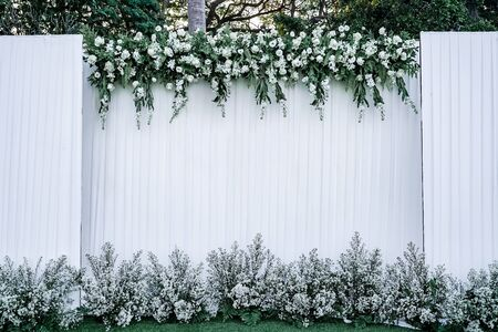 backdrop with blank logo decorated with white flower and green leaf Reklamní fotografie