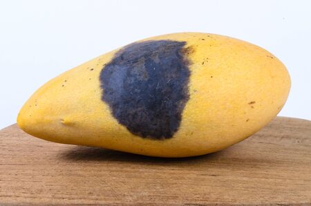 addle: Rotten yellow mango on wooden board from thailand,fruit