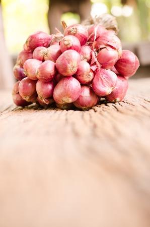 onion red: un grupo de cebolla roja, chalota Foto de archivo