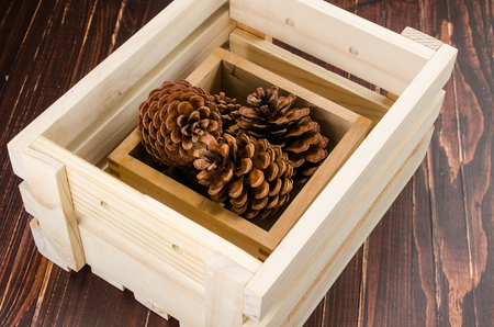 pine cone: pine cone in  wooden crate Stock Photo