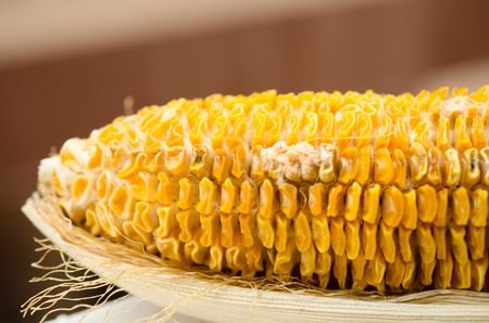 infect: corn became rotten with mold
