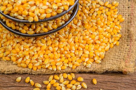 yellow corn: Dried corn seeds in black ceramic bowl on wooden board,agriculture product
