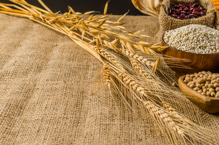 Cereal grains and seeds,beans on sackcloth, agriculture products