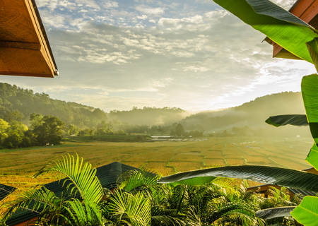 rice terrace after harvest in the morning at Mae Klang Luang village in the north of Thailand , Doi Inthanon National park, Chiangmai , Thailand Stockfoto