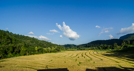 rice terrace after harvest at Mae Klang Luang village in the north of Thailand , Doi Inthanon National park, Chiangmai , Thailand