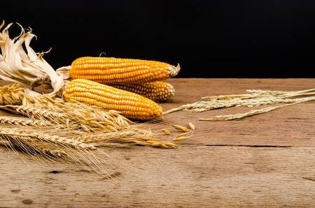 Cereal grains and seeds,corns on sackcloth, agriculture products Stockfoto