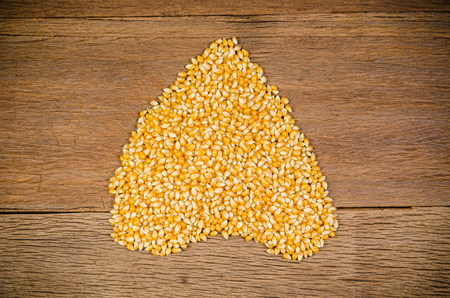 heap of dried corn seeds on wooden board,agriculture product