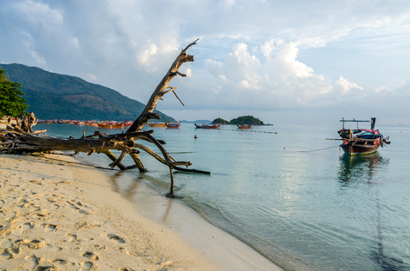 sunrise beach with stump foreground and long tail boat at the south of Thailand ,Lipe island ,Thailand