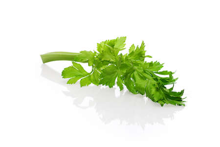 Celery, halm and leaves with reflection on white background Banco de Imagens - 122185081