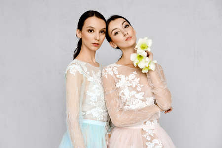 Two beautiful girls in transparent tulle dresses with lace posing in identical manner Standard-Bild