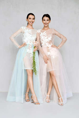 Two beautiful girls in transparent tulle dresses with lace posing in identical manner Stock Photo