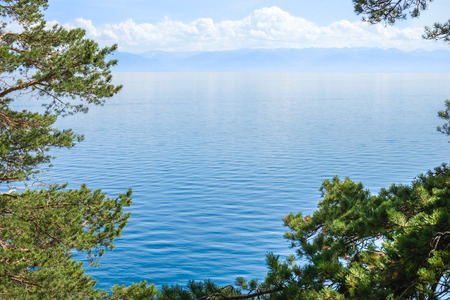 moderate: Baikal lake through the trees. Wather landscape with moderate mountains and light clouds on the horizon. Framed with green pine branches. Stock Photo