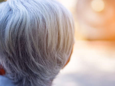 Back view head of elderly woman with sunlight. Focus on gray hair. Space for text. Health care concept