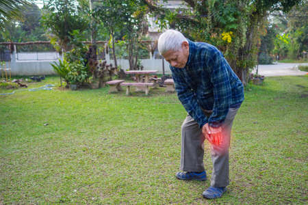Elderly man suffering from knee ache at his garden. Healthcare Concept.