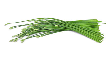 Allium flower: fresh chinese chives isolated on white Stock Photo