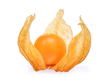 cape gooseberry,physalis isolated on white background