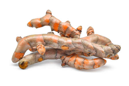 carminative: fresh turmeric roots isolated on white background