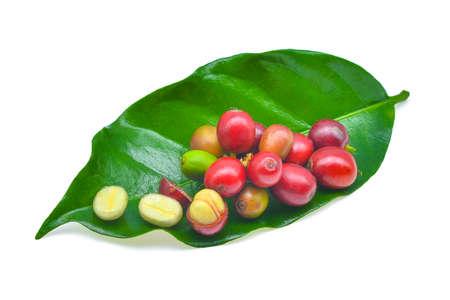 커피 곡물 및 흰색 배경에 고립 된 나뭇잎 스톡 콘텐츠