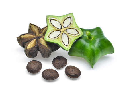 Plukenetia의 Volubilis 기능, 사챠 inchi, 흰색 배경에 고립 된 사샤 땅콩.
