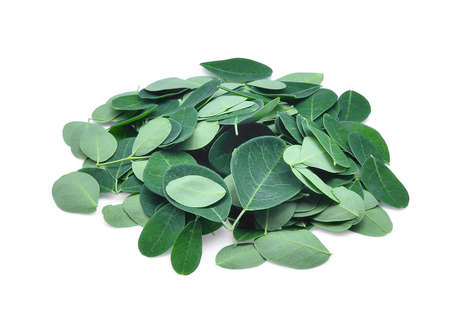 pile of fresh moringa leaves isolated on white background Stock Photo