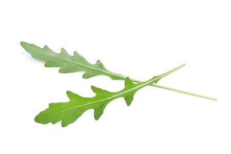 wild rocket green leaves (Arugula) isolated on white backbground Stock Photo