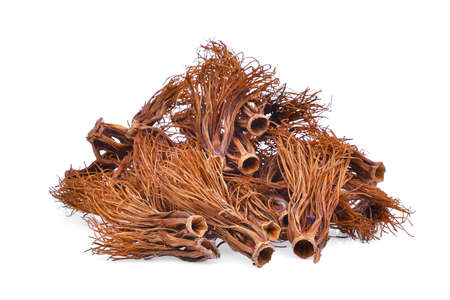 pile of dried bombax ceiba, asia herbs isolated on white background