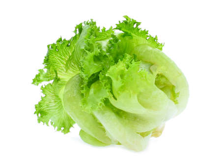 green frillice iceberg lettuce isolated on white background 写真素材