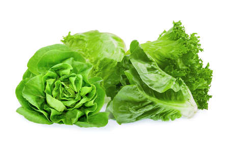 fresh baby cos, frillice, iceberg and butter lettuce isolated on white background