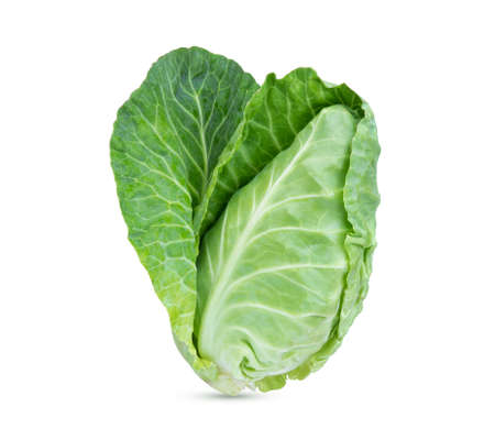 fresh green pointed cabbage isolated on white background Stock Photo
