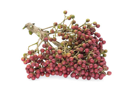 Szechuan pepper (Zanthoxylum piperitum), fruits isolated on white, tropical herbs