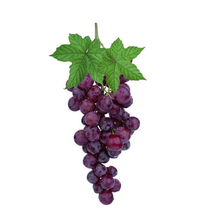fresh red grape with leaf isolated on white background