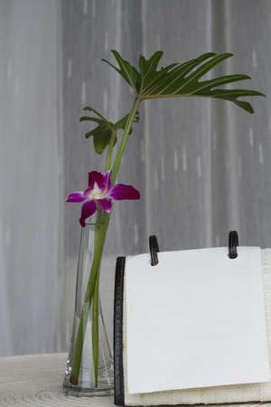 glass vase orchid white calendar and white curtain background photo