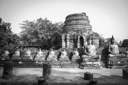 bondad: Buda meditando unidad conmemorar la bondad de la gente.