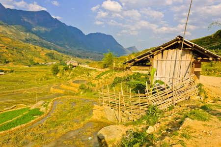 Sapa rizi�re en terrasses, au Vietnam Banque d'images - 13984323
