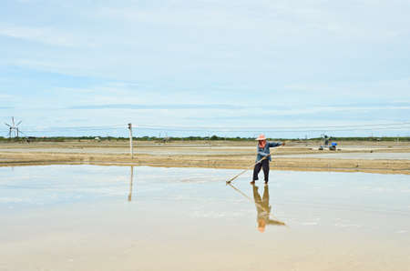 evaporation: Salt harvesting in evaporation ponds