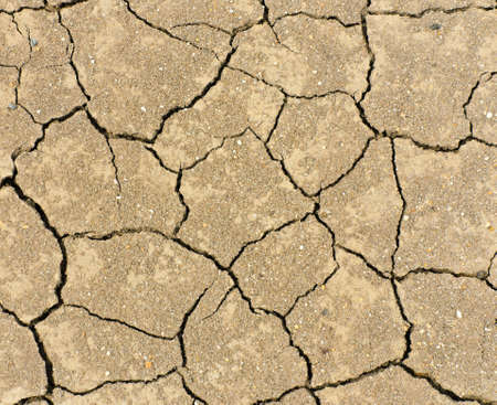 Dried and cracked ground Stock Photo - 18707314