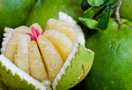 citrus maxima: Flesh of a pomelo in the market, Thailand Stock Photo